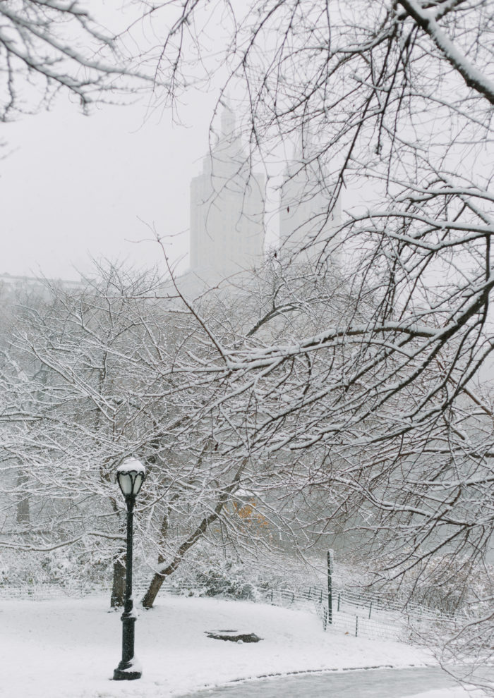 Photo Essays: Snow Day in Central Park