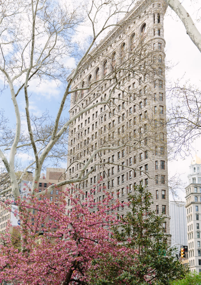 New in the Etsy Shop: Blooms in Flatiron