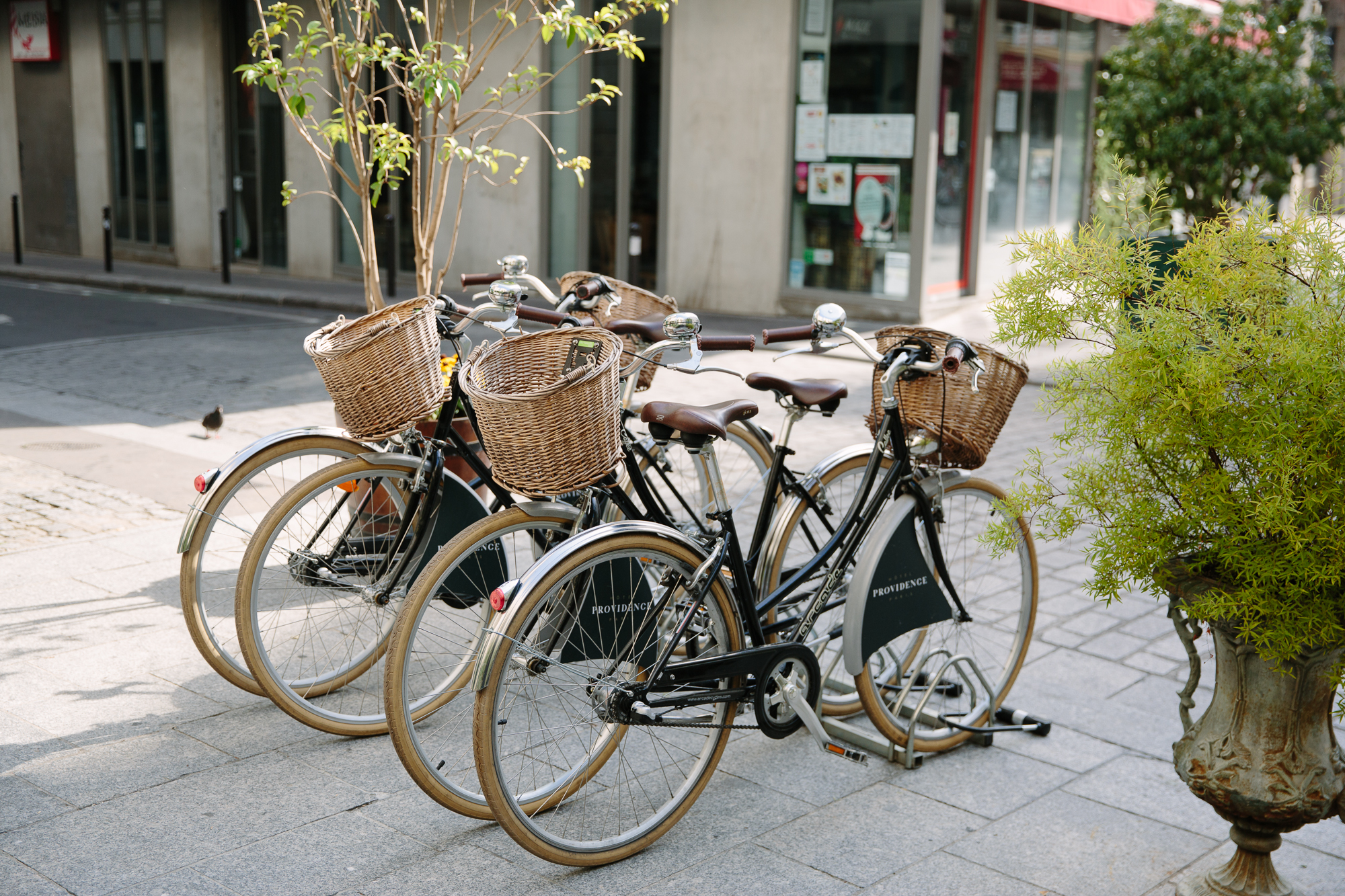 Bicycles at Hotel Providence