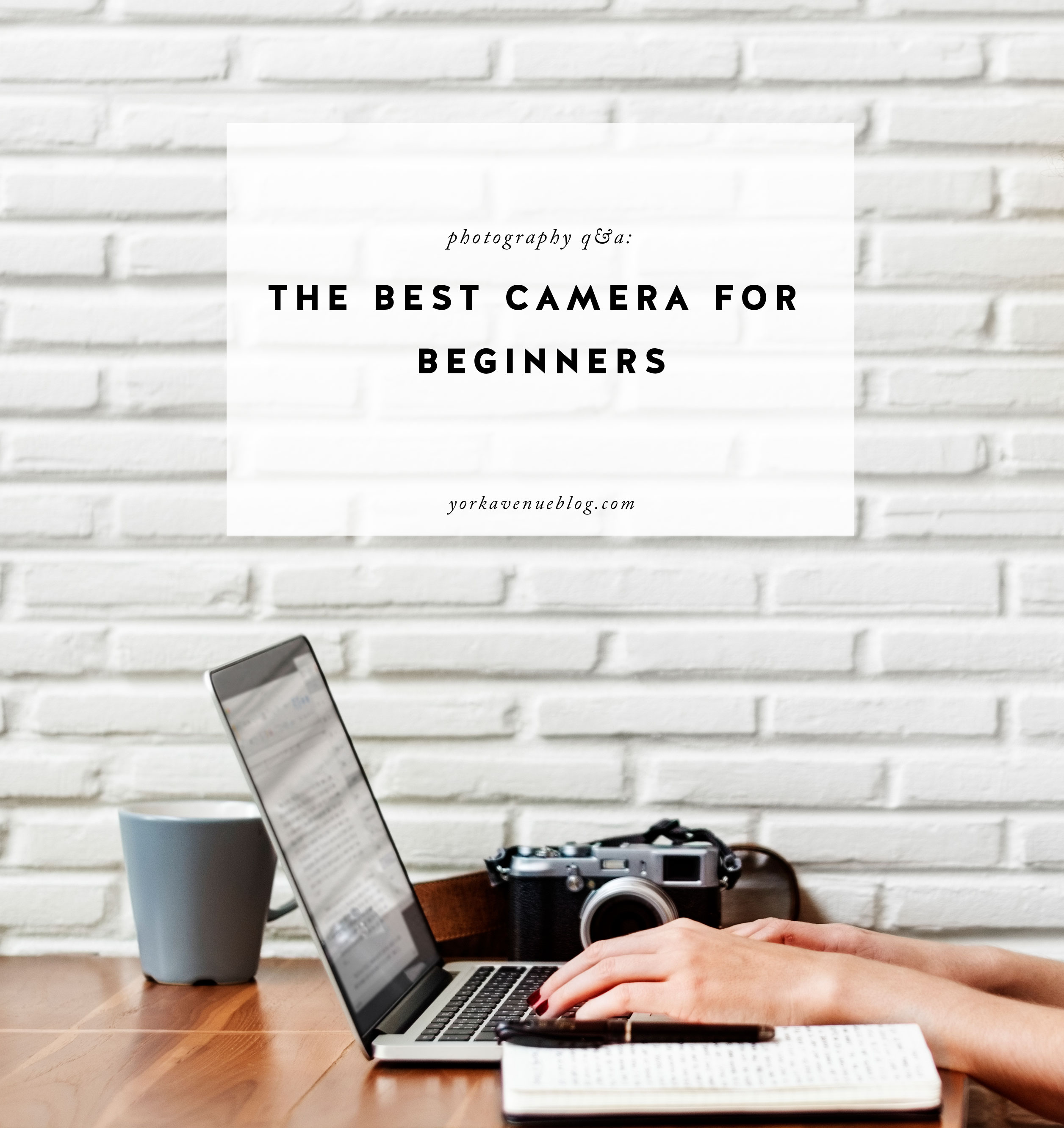 The Best Camera for Beginners and What I Use Now featured by top US photographer and blogger, York Avenue