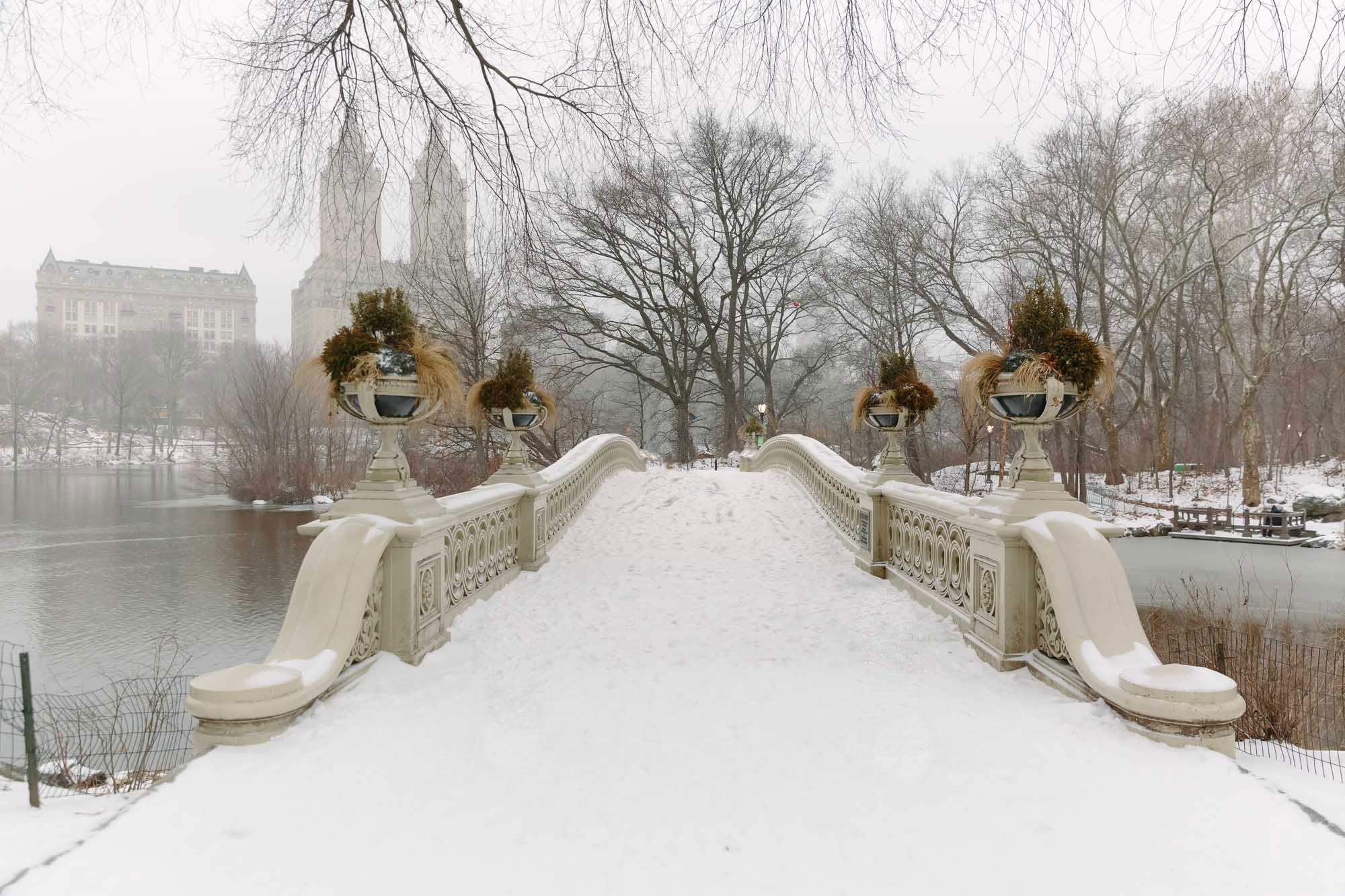 Snow in Central Park featured by top New York City blog York Avenue