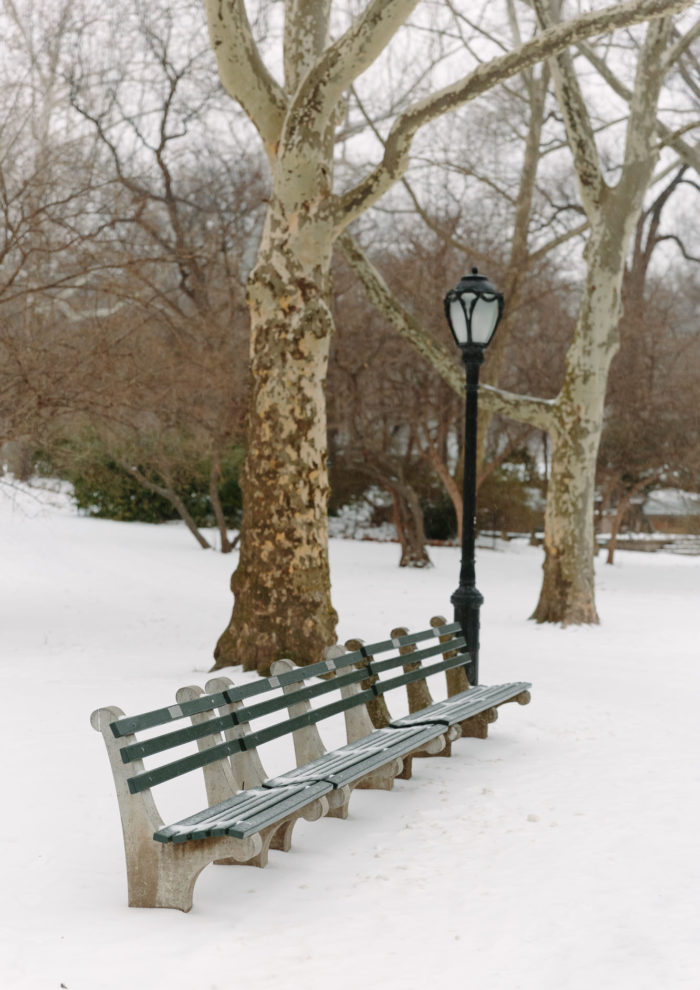 Photo Essays: Snow in Central Park