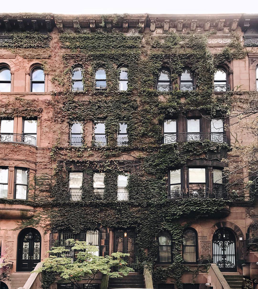 Ivy Covered Houses featured by top New York City blog York Avenue