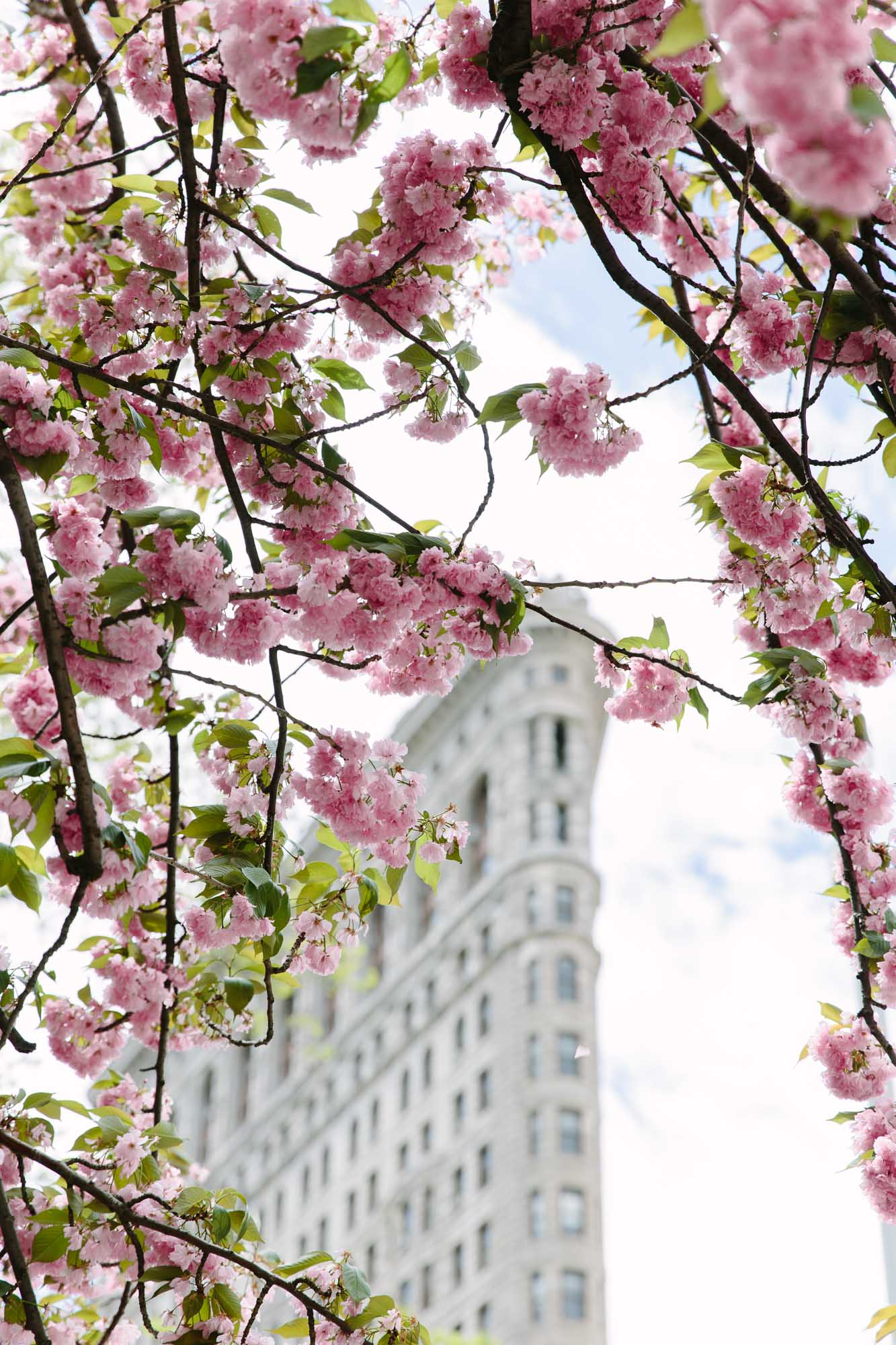 Spring in New York City featured by top New York City blog York Avenue